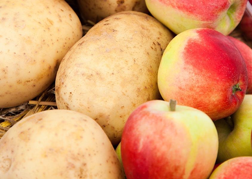 Äpfel und Kartoffeln nebeneinander auf Strohbett