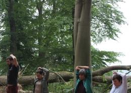 Vier Personen machen eine Dehnungsübung im Wald