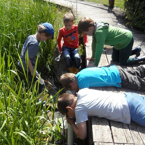 Kinder suchen nach Tieren auf dem Wasserlehrpfad