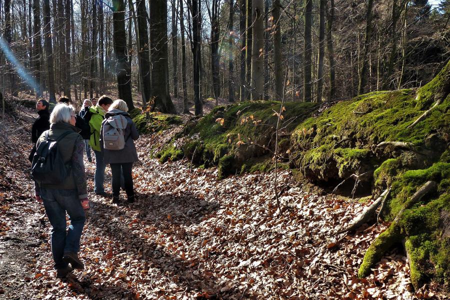Wanderer bei einem Waldspaziergang im Herbst