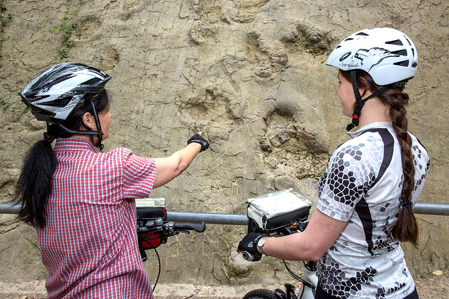 2 Radfahrer vor den Saurierspuren