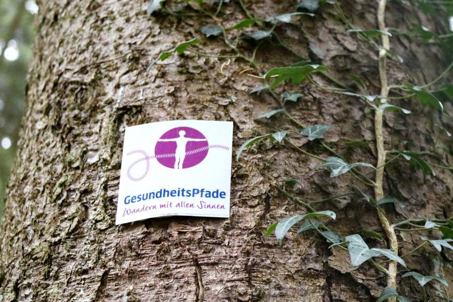 An Baumstamm befestigte Markierung Gesundheitspfade